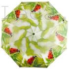 Katicás esernyő