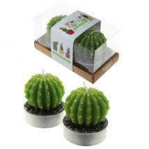 Díszgyertya - Kaktusz - 2 db