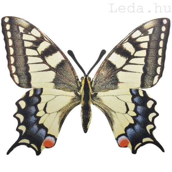 Pillangó Fali Dekoráció - Fecskefarkú