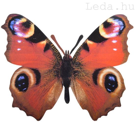 Pillangó Fali Dekoráció - Pávaszem