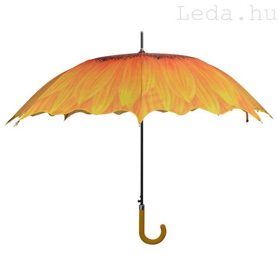 Napraforgó esernyő