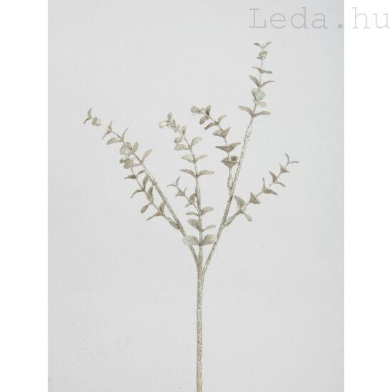 Eukaliptusz művirág