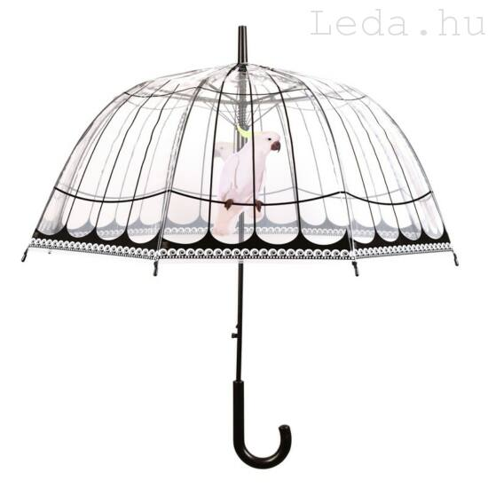 Kalitka Esernyő